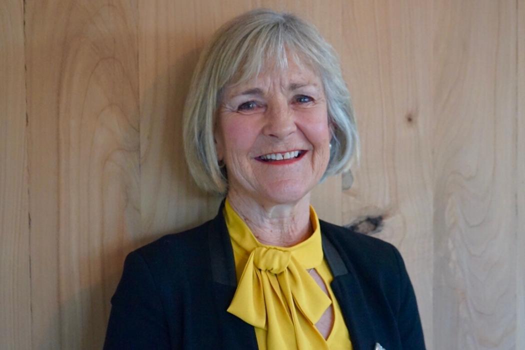 Gillian Simpson council member picture