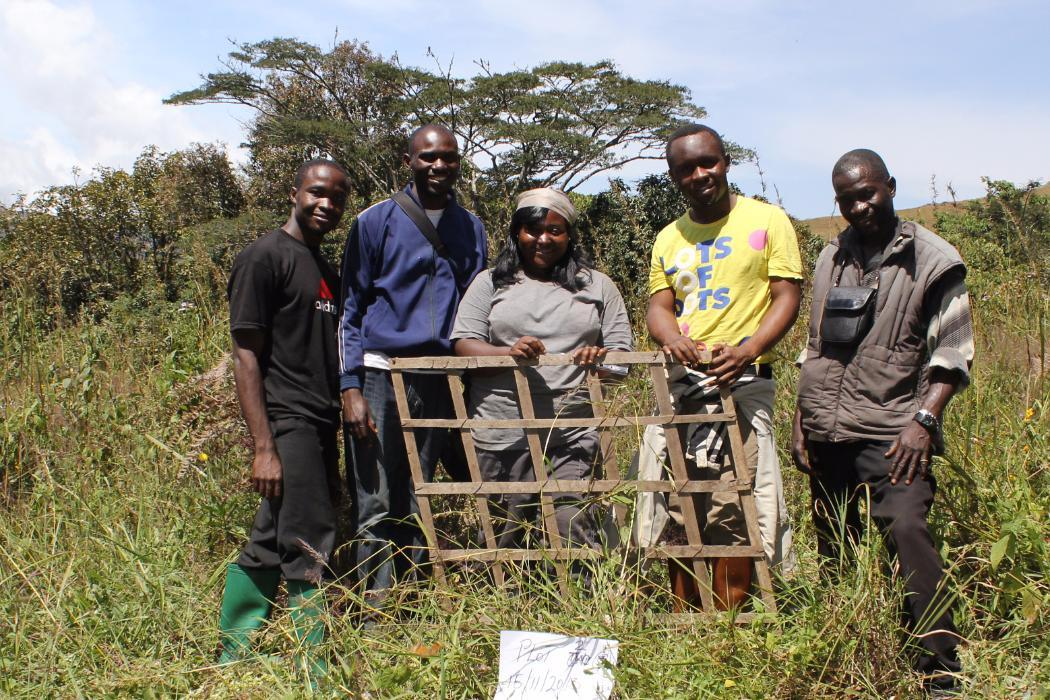 planting out reforestation plot in nigeria