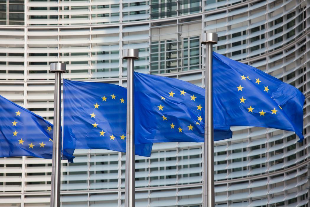 European Union flags-dpc