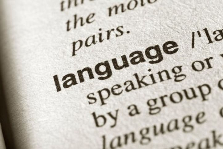 "The meaning of ""Language"" in a dictionary"