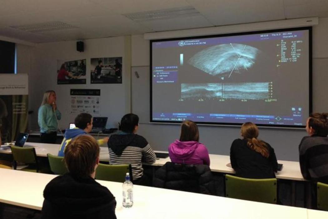 language seminar with ultrasound images projected on a screen