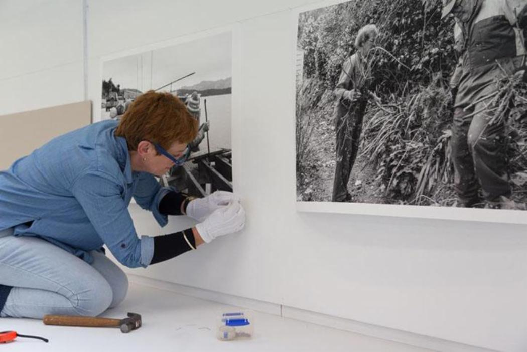 Woman putting up photographs for an exhibition