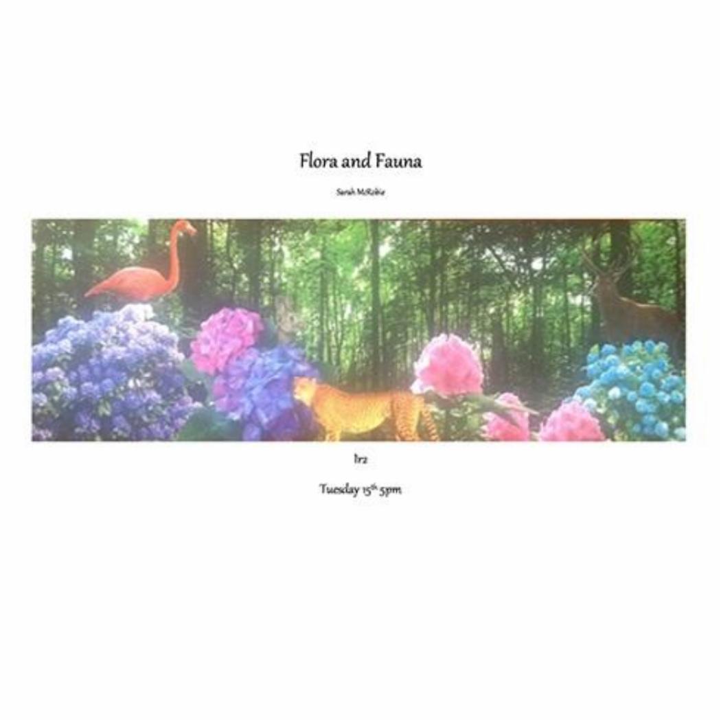 Sarah McRobie Flora and Fauna