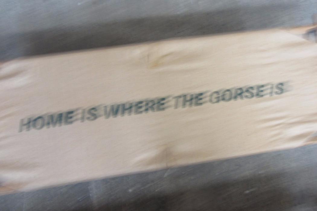 Laura Marsh | Home Is Where The Gorse Is (Olivia Spencer Bower Award Winner 2012