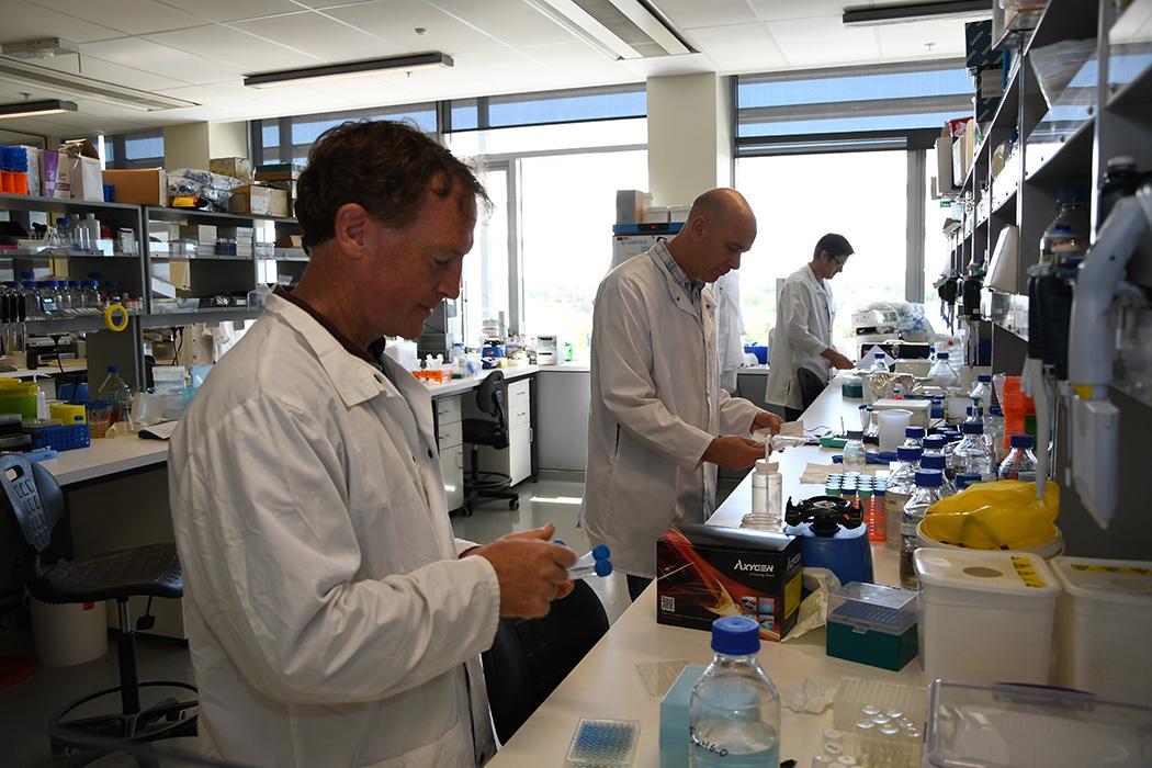 Callaghan Innovation Lab photo