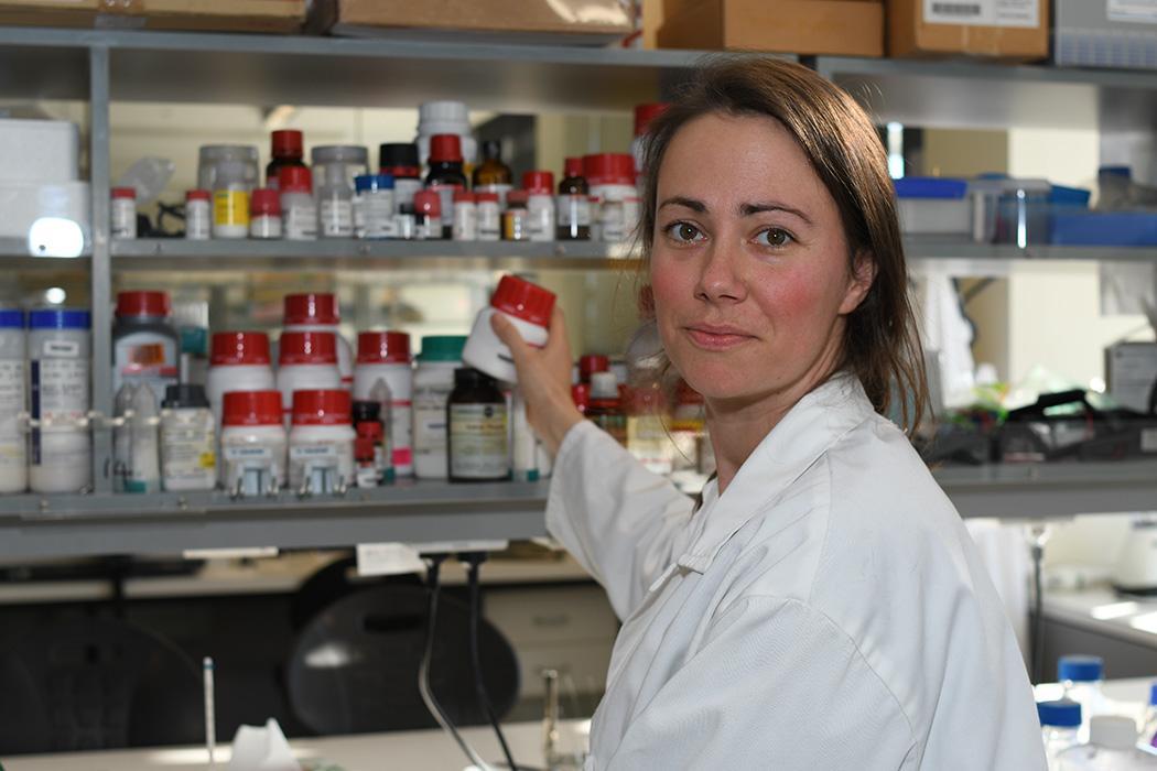 Callaghan Innovation Daniela Remus chemical shelf