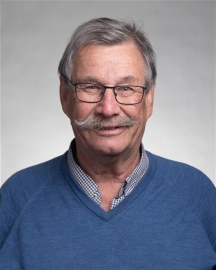 David Palmer profile