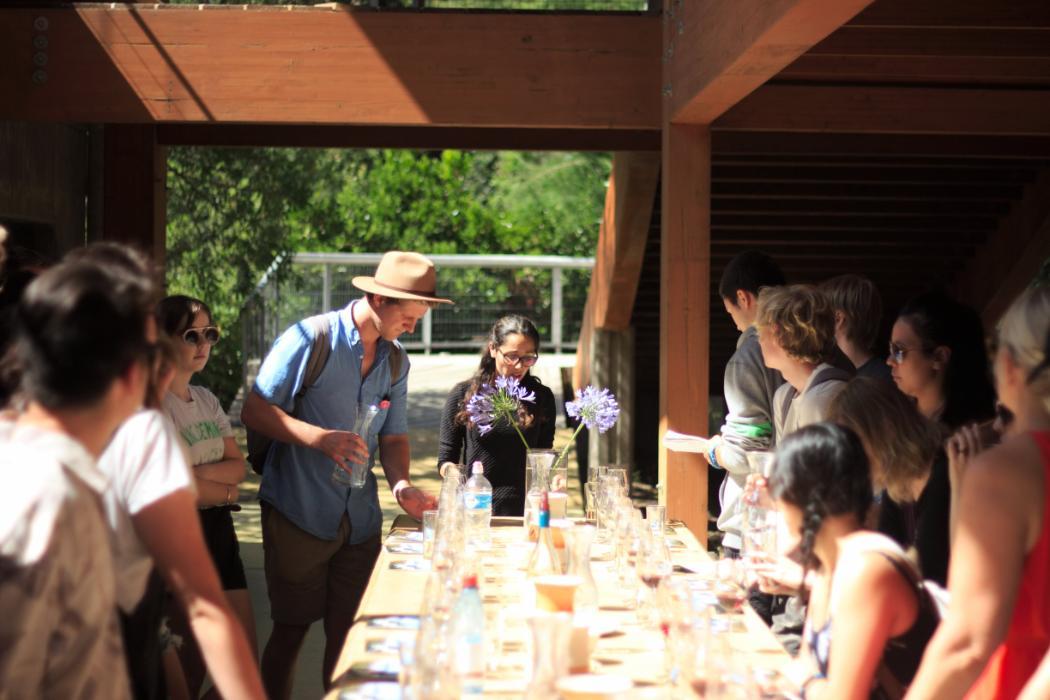 ECON228 wine tasting Vina Loma Larga