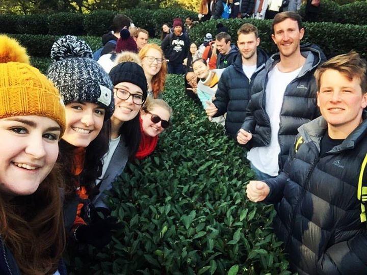 MGMT228 study tour tea village