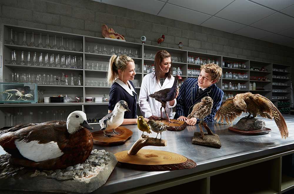 Science teaching_Chrystie Woods