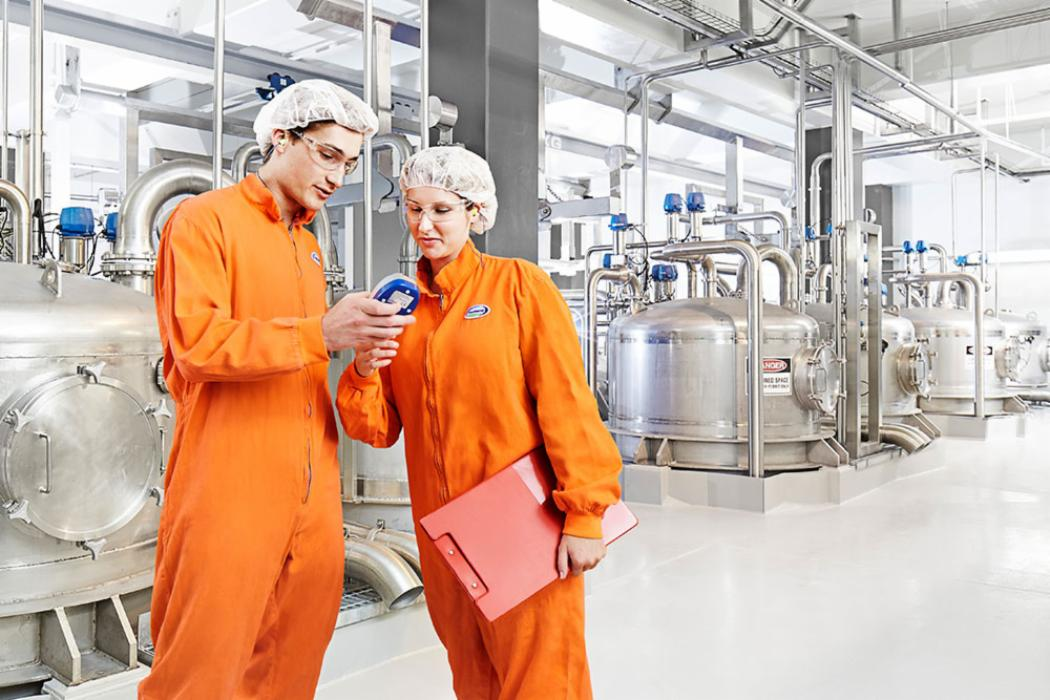 Engineers in milk processing plant landscape