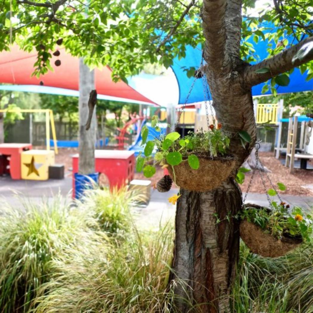flower-pots-hanging-in-outdoor-play-area_EYC_gallery.jpg