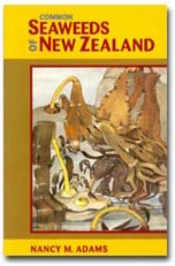 Common Seaweeds of New Zealand