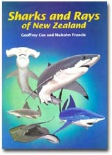 Sharks and Rays of New Zealand