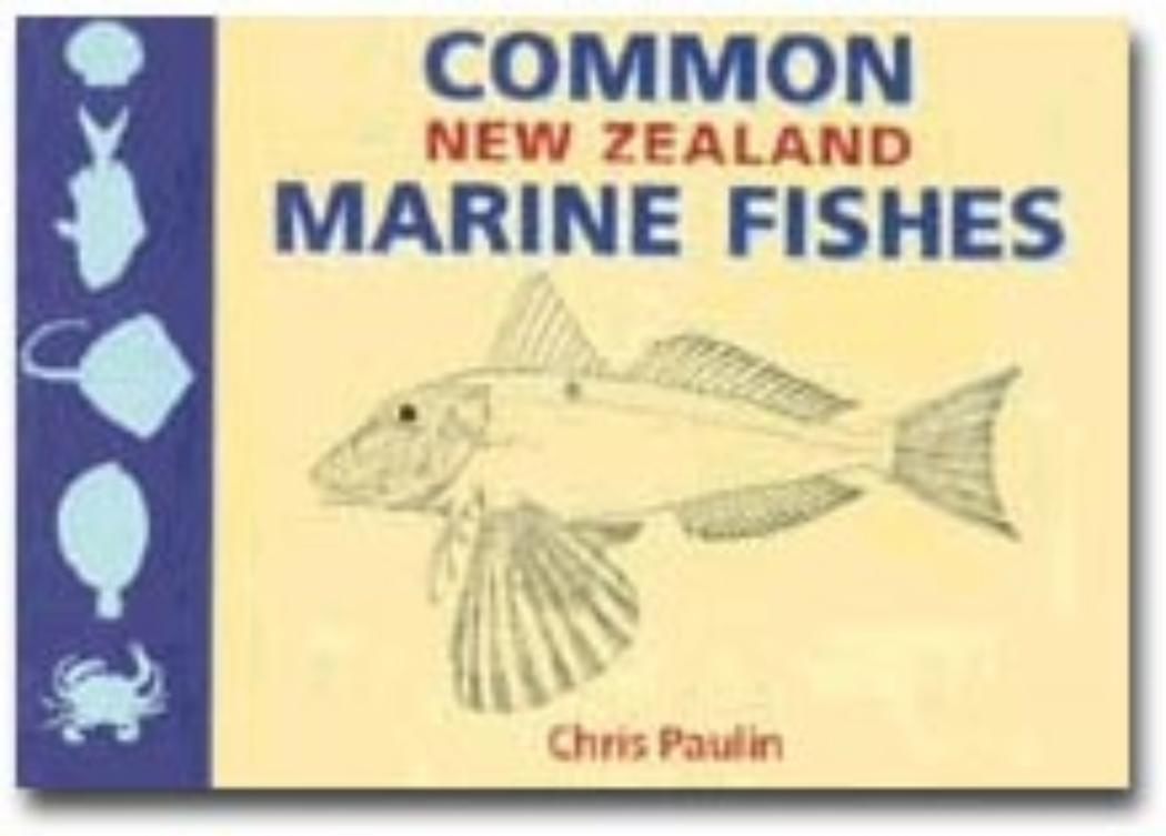 Common New Zealand Marine Fishes