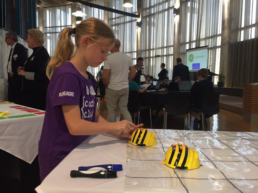 Beebots in the Behive