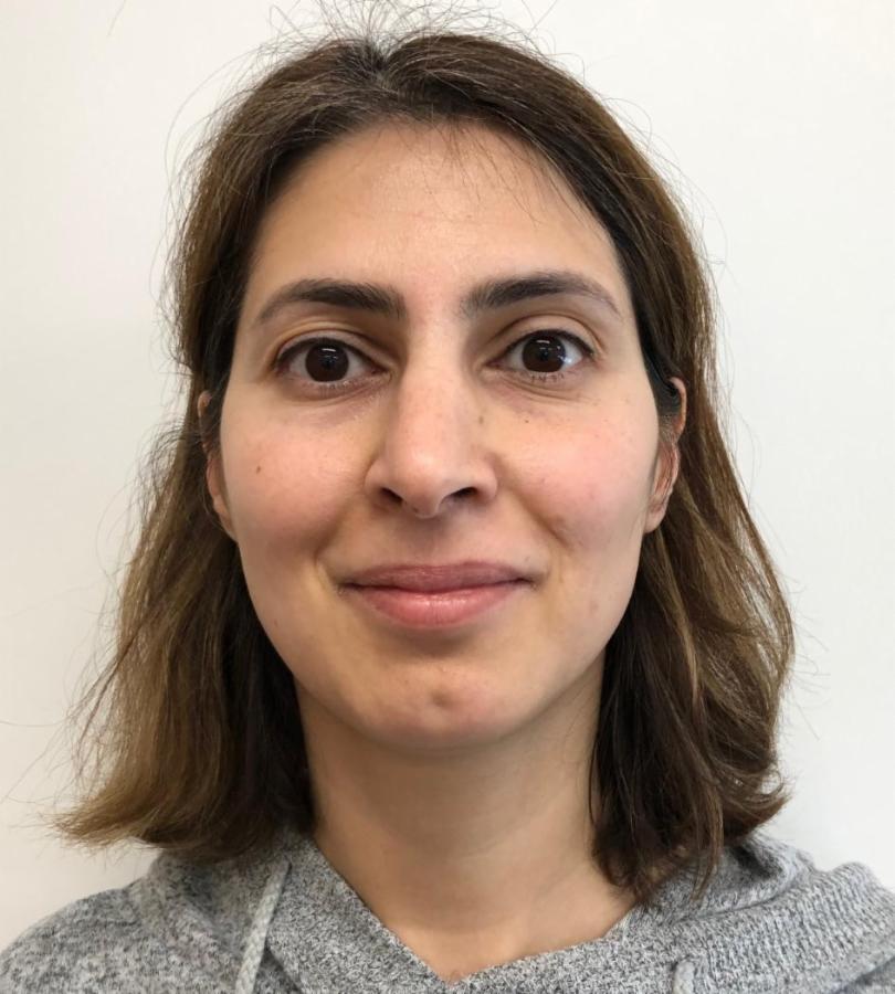 Mahnaz Shahverdi
