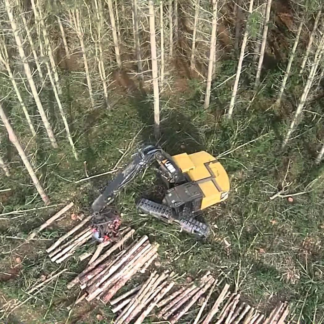 Brand Logging - CTL harvesting with aerial footage