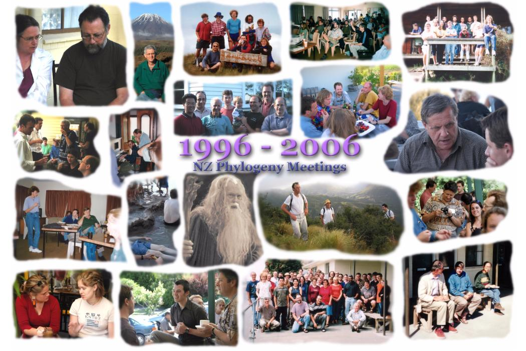 New Zealand Phylogenetics Meeting photo collage