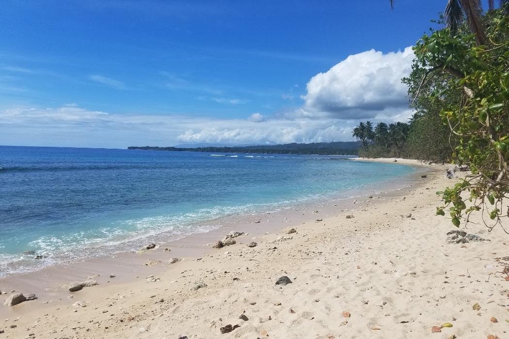 Minor in Bioengineering, Solomon Islands Summer Experience