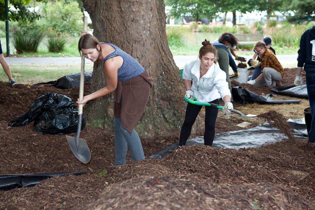 Students gardening landscaping landscape