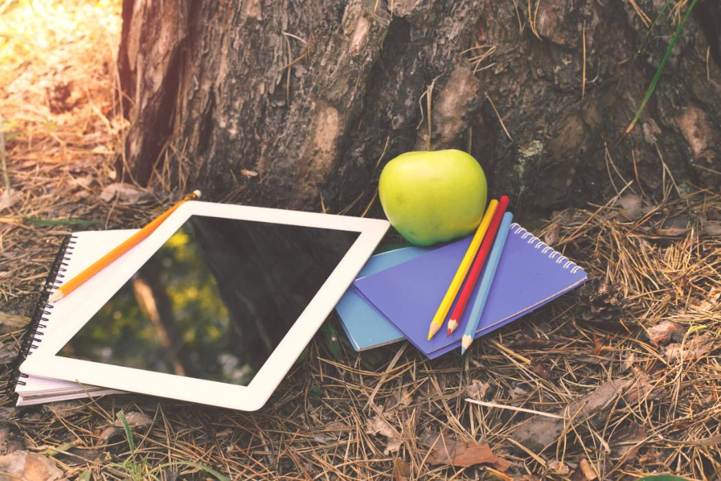 tools for studying under a tree