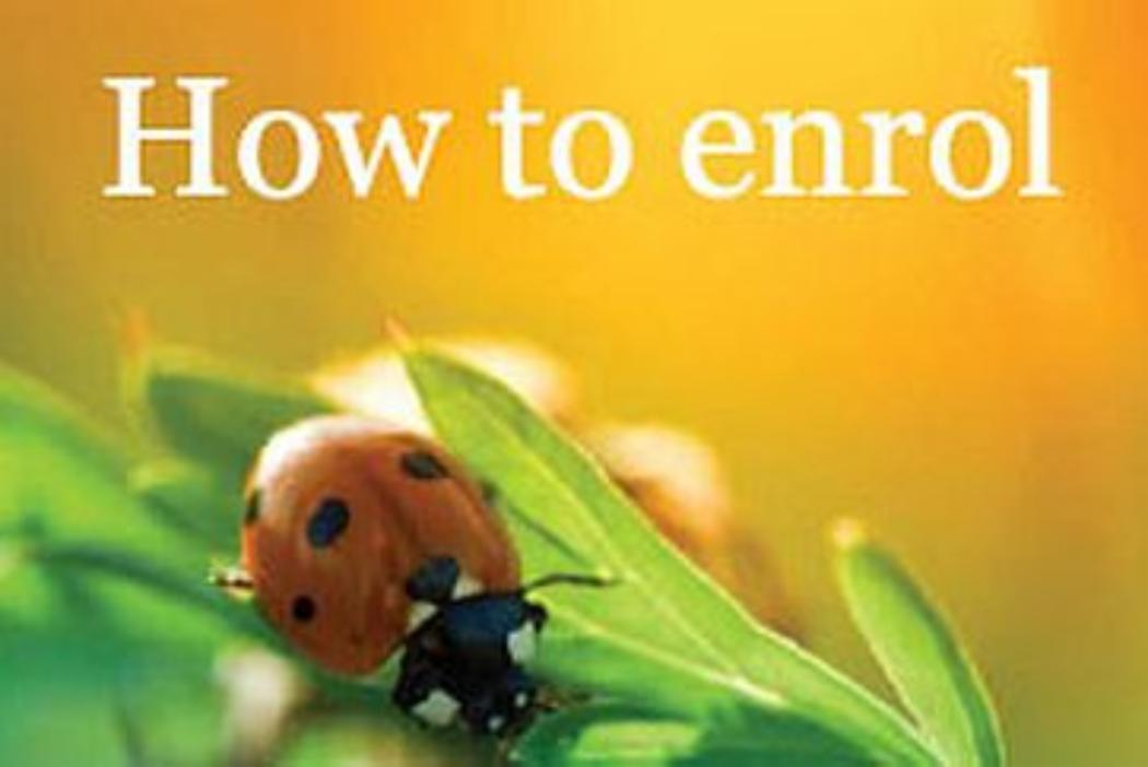 How to enrol - ladybug on leaf