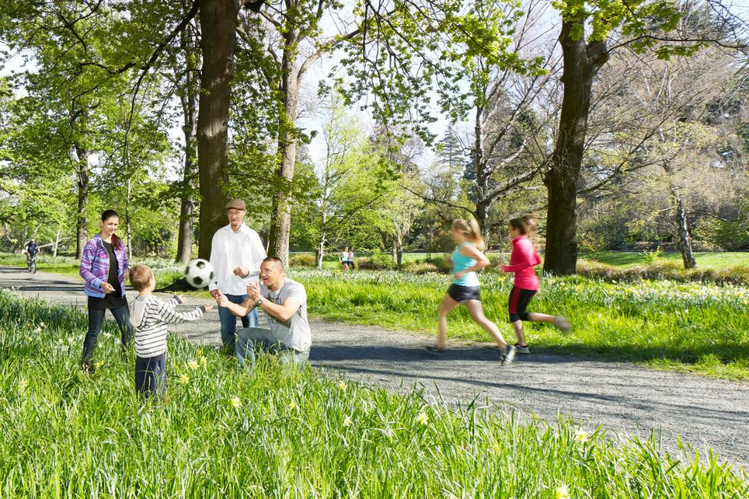 hagley park health