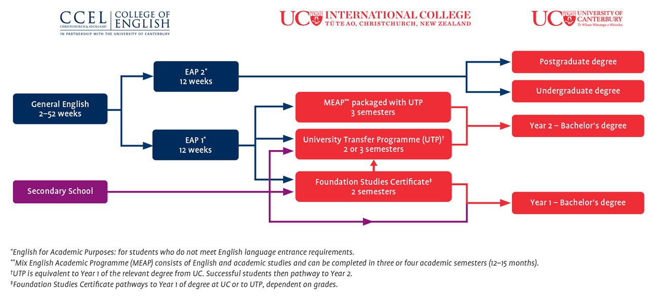 International Pathways Diagram