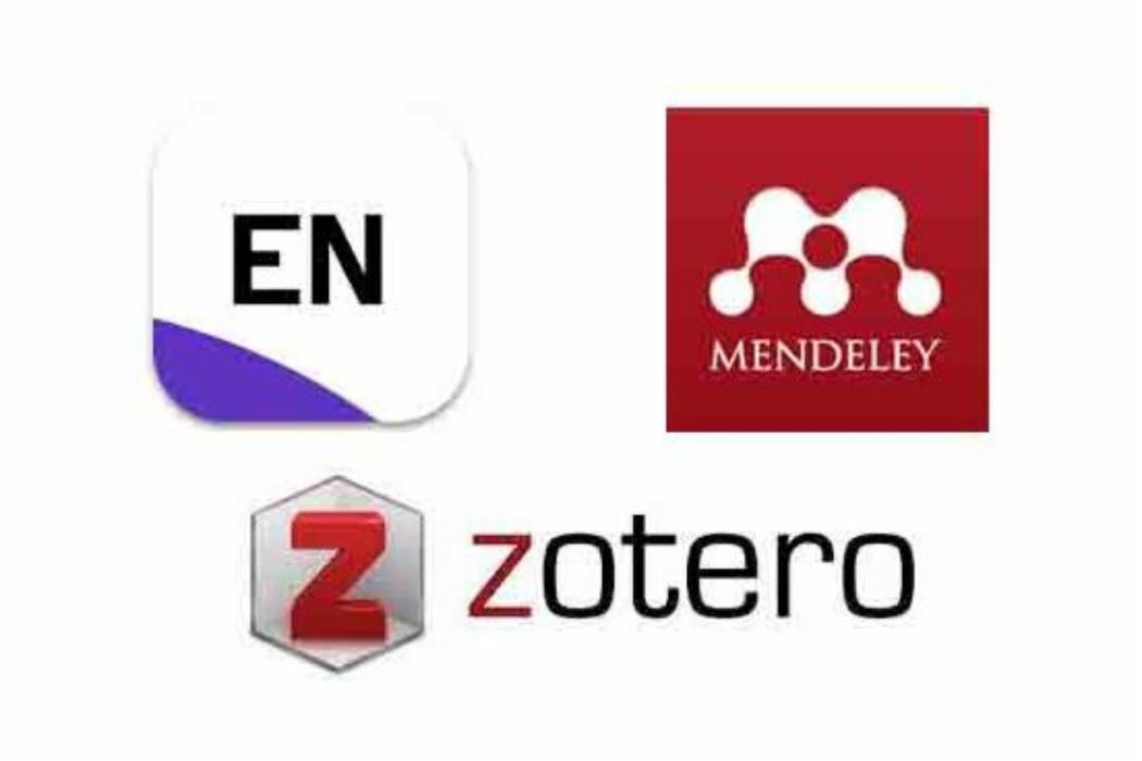 ref-management-logos