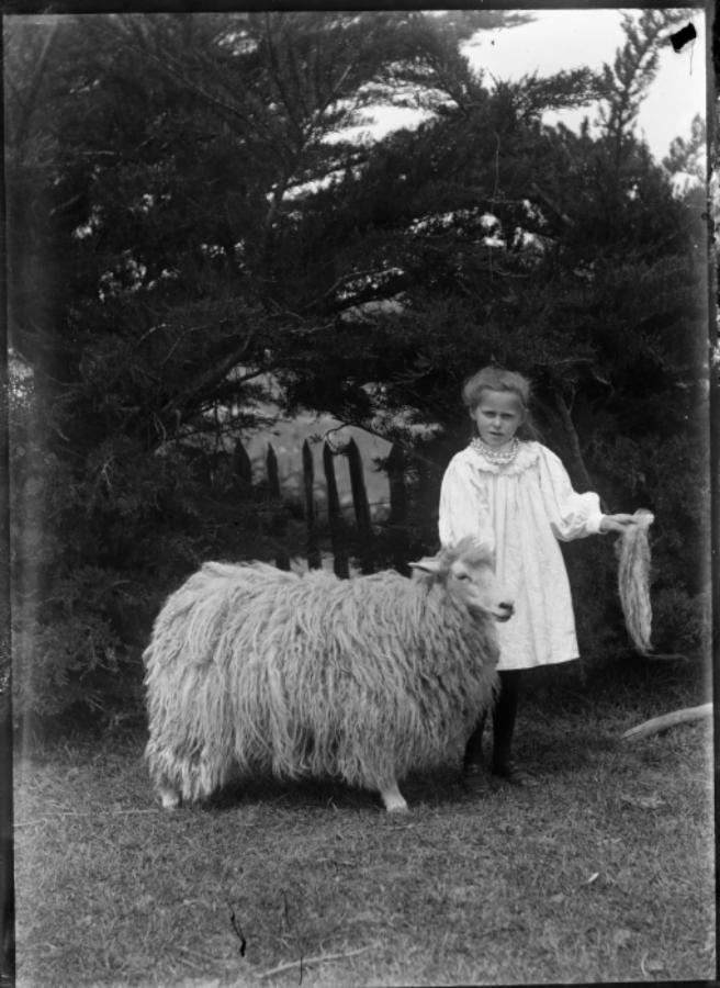 Girl with sheep