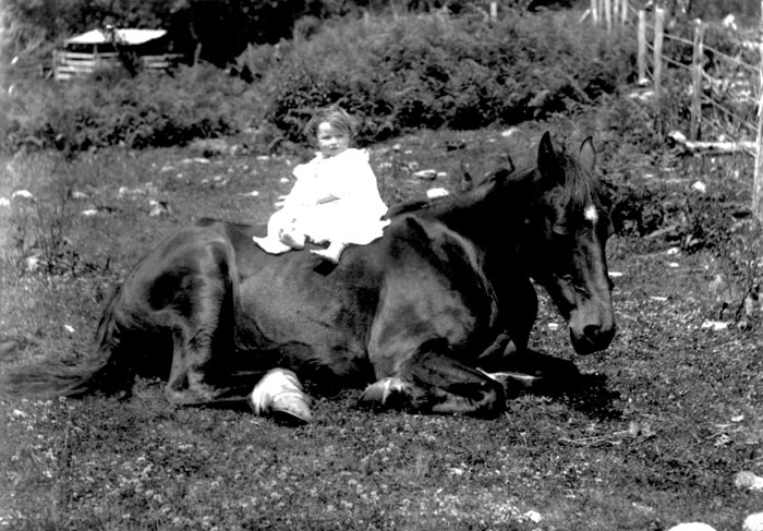 My horse and I …