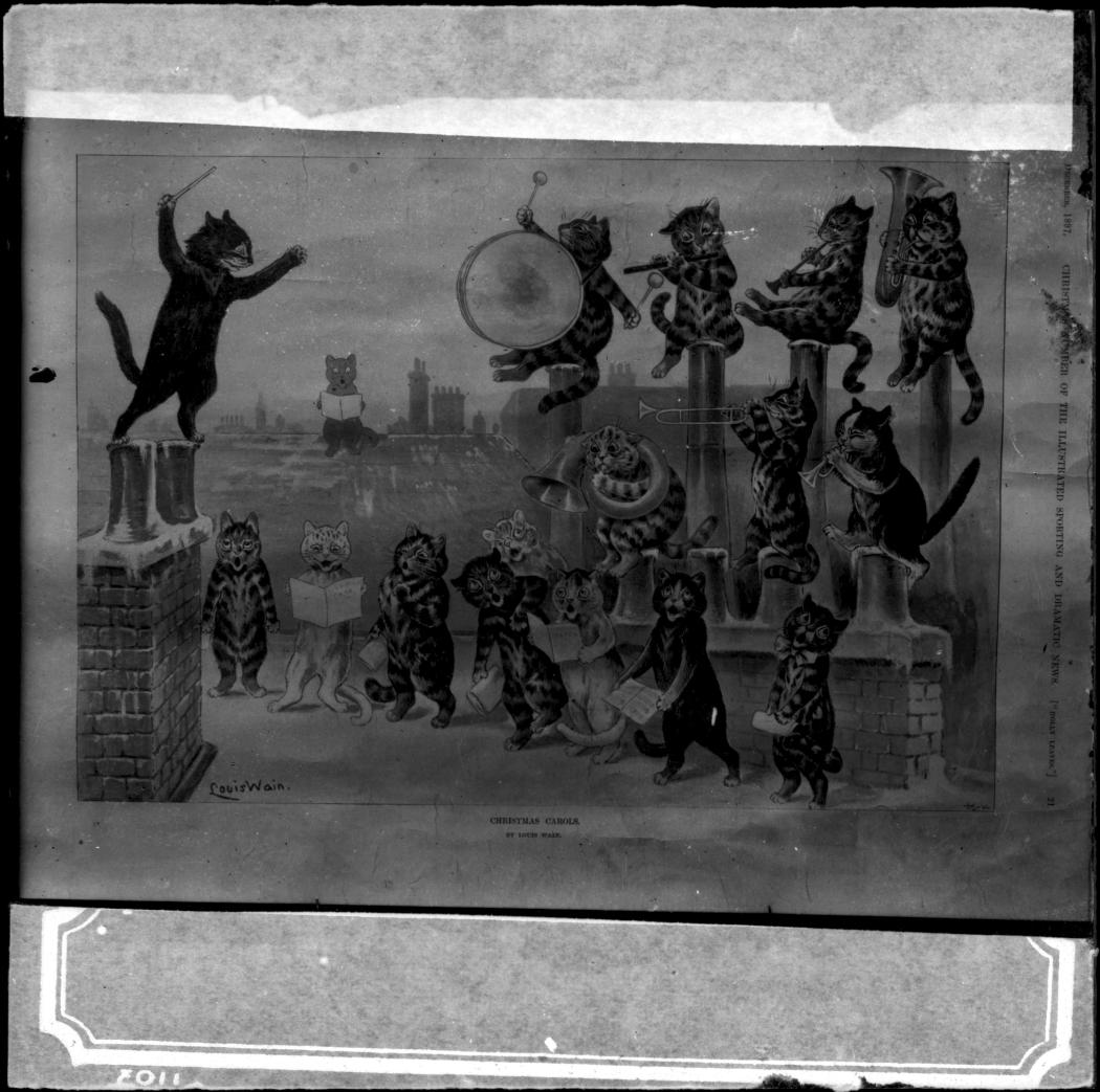 MB1667-25720-Cat-Orchestra (003)