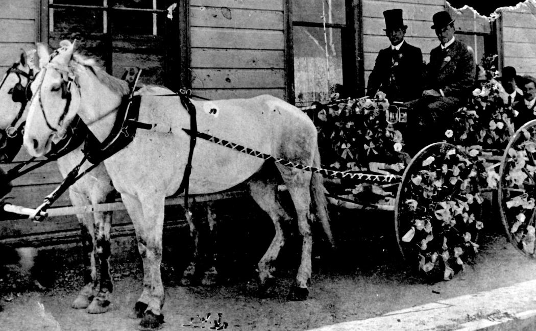 Tom Seddon carriage decorated  (in blue and white) for an election meeting