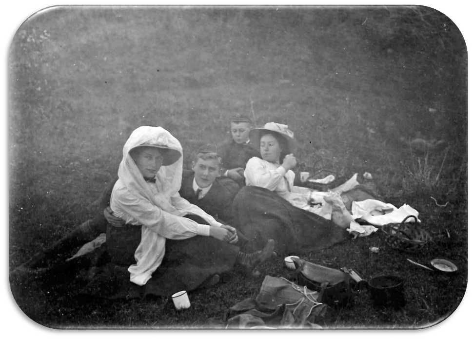 picnic - Imported from Library News system