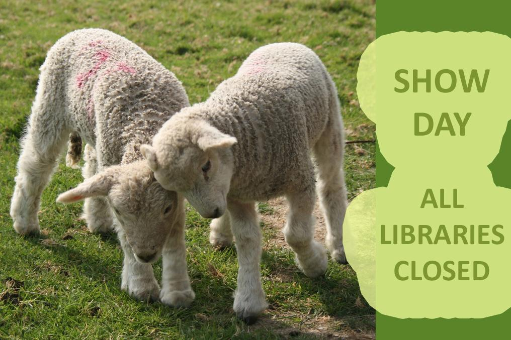 UC library close for show day information slide with 2 lambs