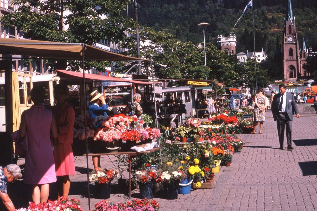 Flower market library image of the week