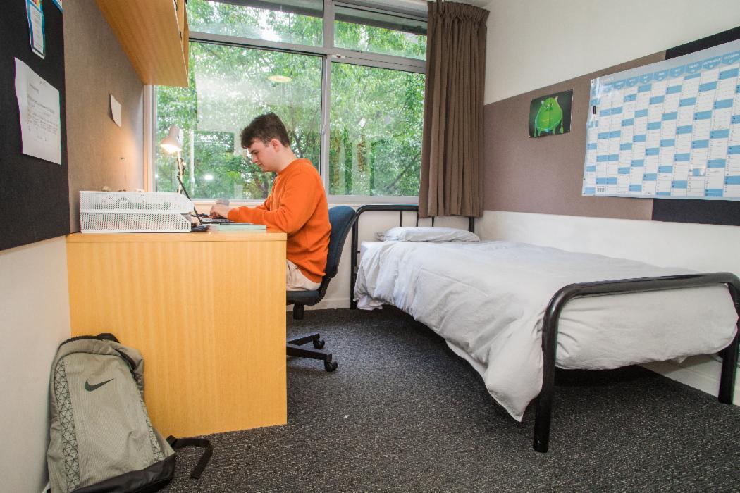 IA Hinau Bedroom