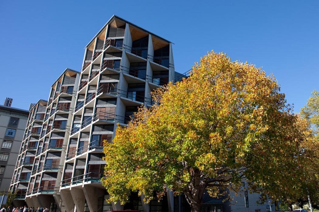 Erskine building landscape