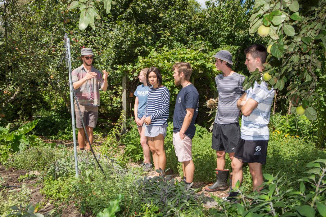 UC Community Garden 2019