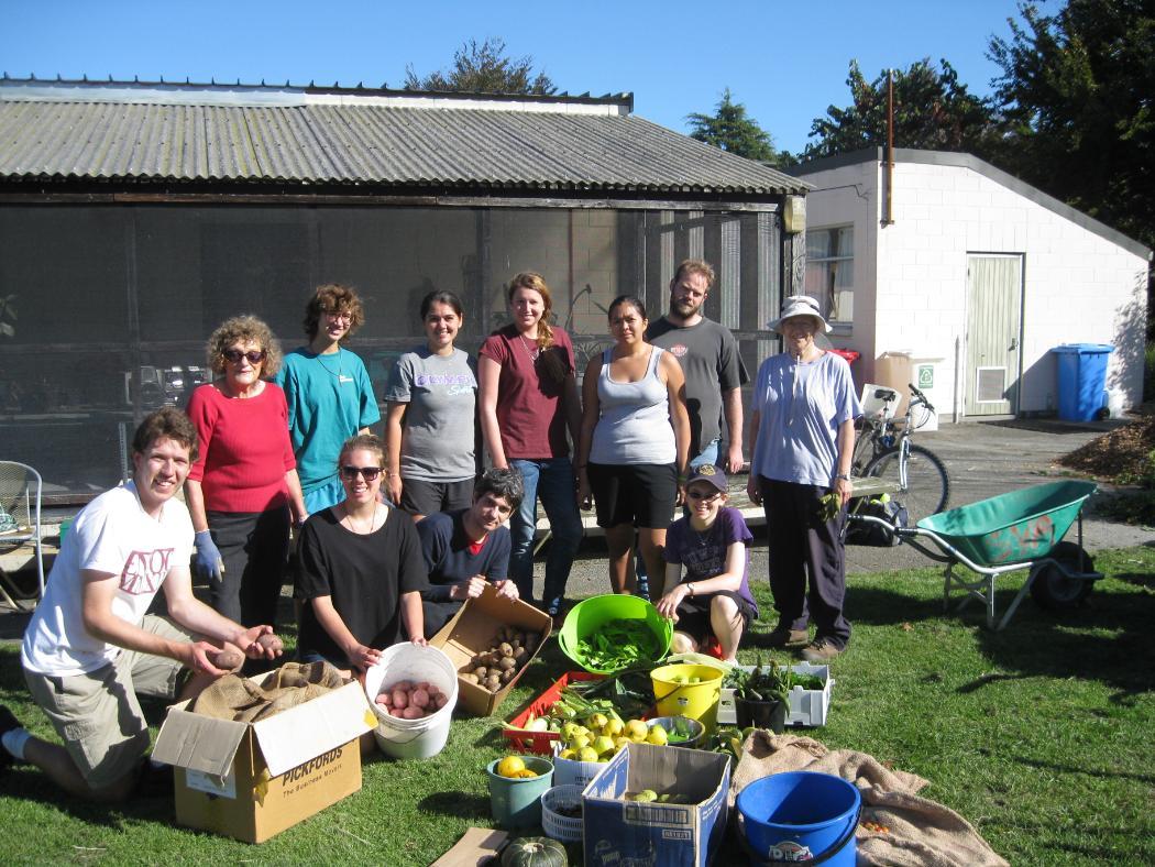 Dovedale Community Garden 1