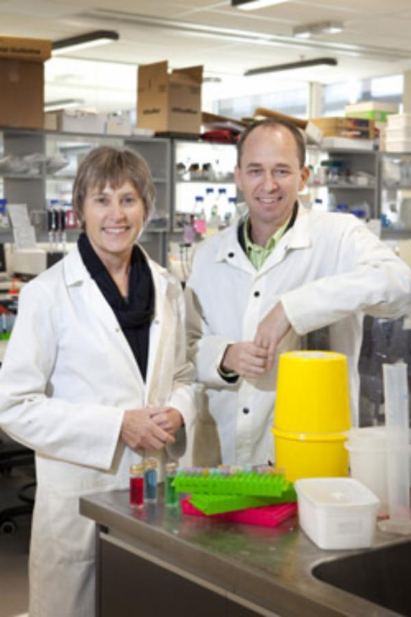 Helping NZ farmers optimise fertiliser use