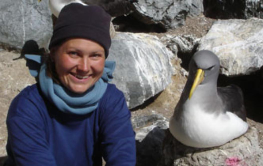 Endangered albatrosses compete with fisheries