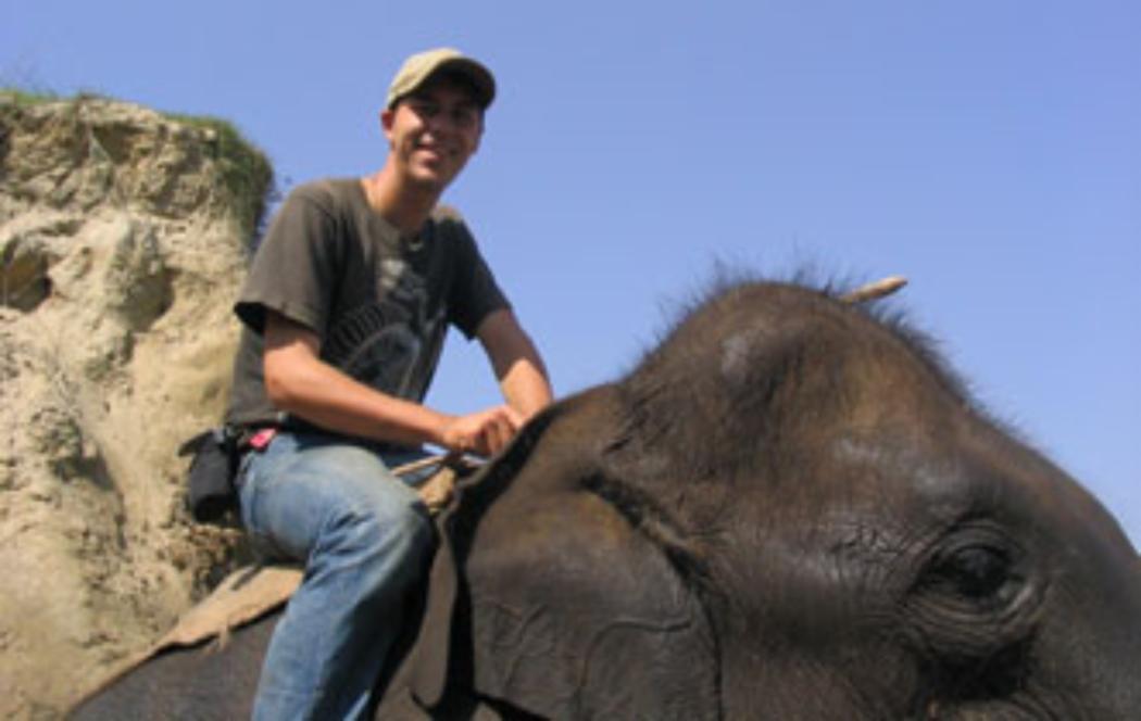 Expert to talk about captive elephants