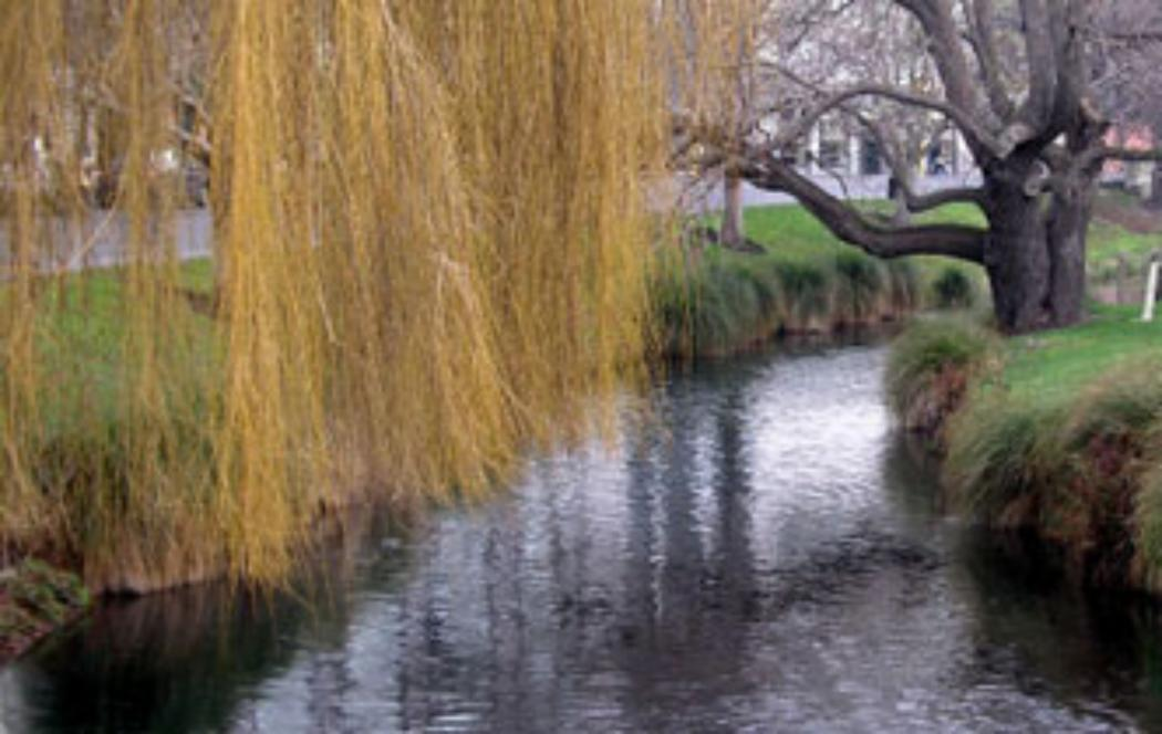 Avon River could be a feature of world-best park