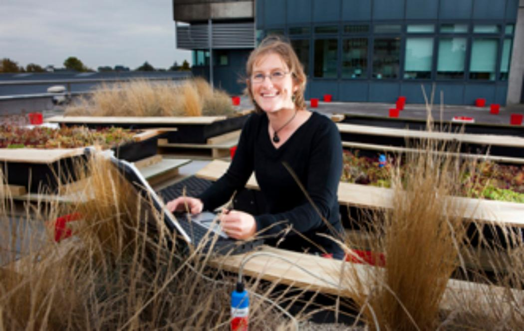 UC makes breakthrough in green-planted roof