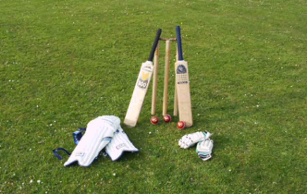 UC researchers undertaking cricket study
