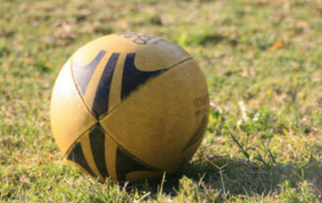UC expert argues against rugby card system