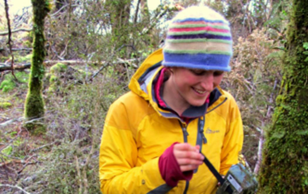 Research looking at ways to conserve NZ wetlands