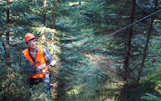 UC student's European research may aid NZ forestry